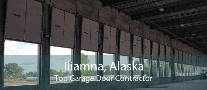 Iliamna, Alaska Top Garage Door Contractor